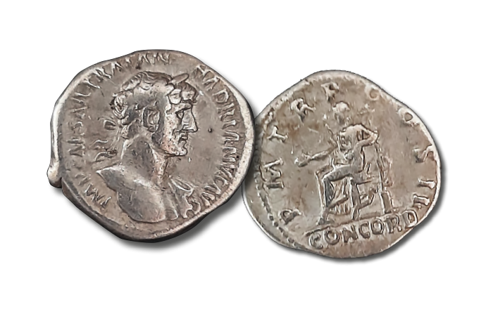 A unique, direct link to the past, one of the world's most sought-after coins